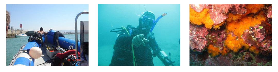 PADI courses costa del sol in the south of spain
