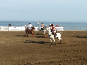 Costa del Sol Beach Polo Estepona